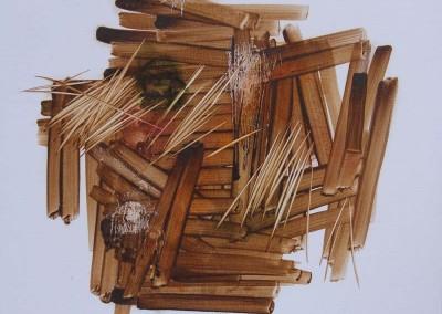 Transfarmer I, 50 cm x 50 cm, cat minyak di kanvas,    2015